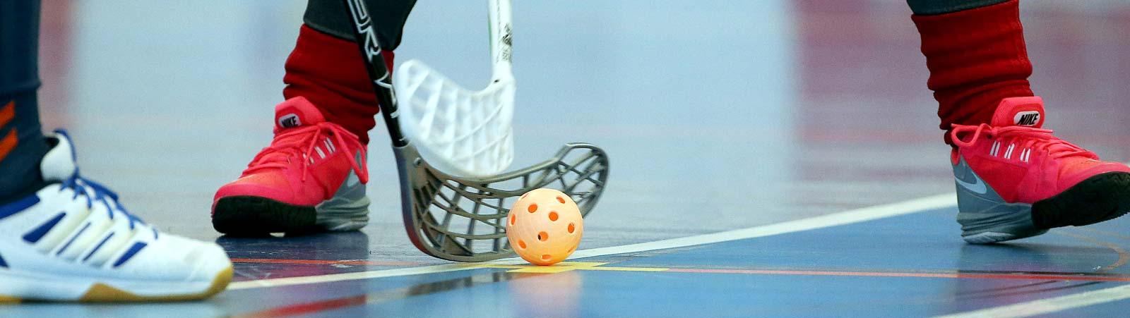 Floorball Verband